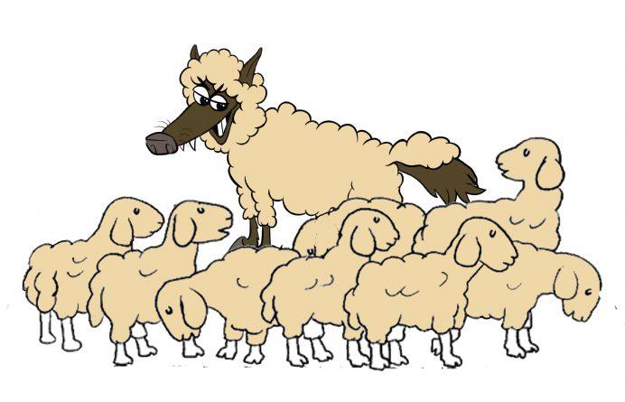 lobo con piel de cordero y ovejas