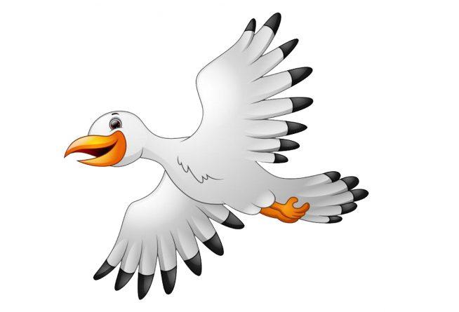 La gaviota de Punta Umbría